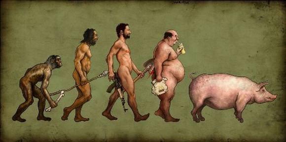 funny-evolution15