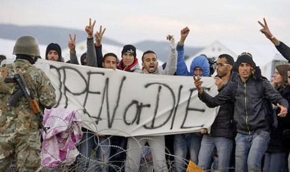 refugees5